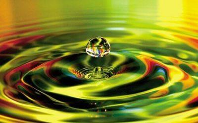 Psychologie énergétique (par Yves Wauthier-Freymann)