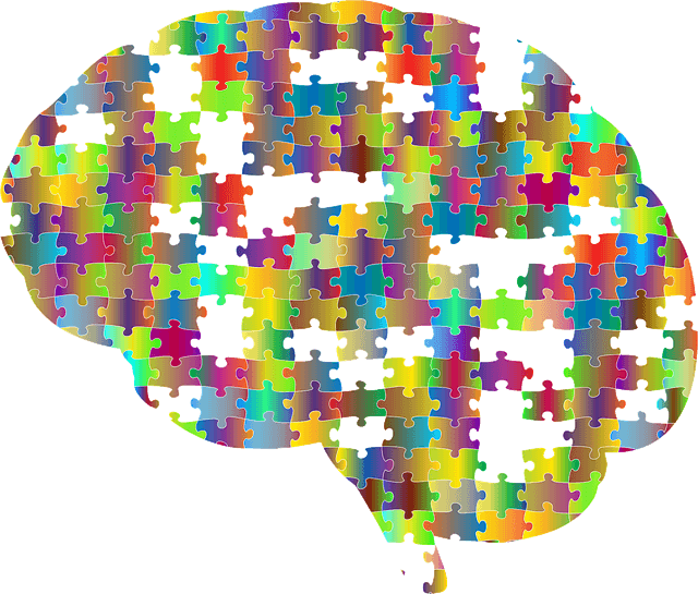 scanners cerveau