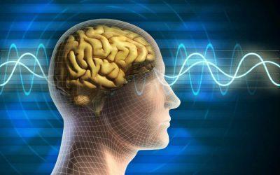 Études et articles de synthèse sur la psychologie énergétique