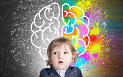 Comprendre le comportement des enfants grâce aux étages du cerveau