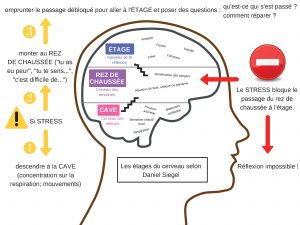 stress cerveau enfants émotions