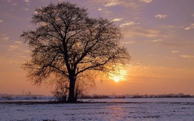 Comment expliquer notre sentiment d'angoisse et notre peur de la solitude, à l'approche des fêtes de fin d'année ?