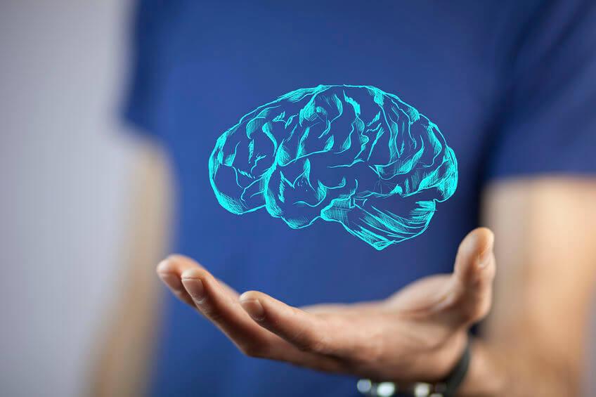 Les approches neurocognitiveset somato-cognitives